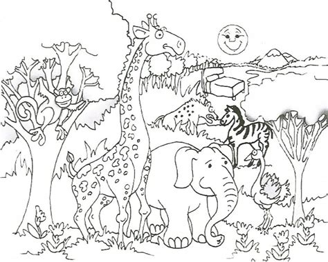 coloring pages for jungle animals safari animal coloring pages coloring home