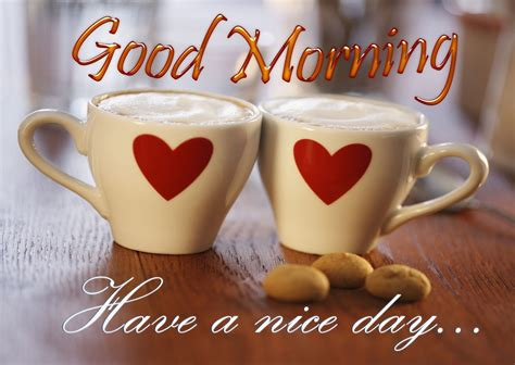 beautiful good morning   nice day wallpapers