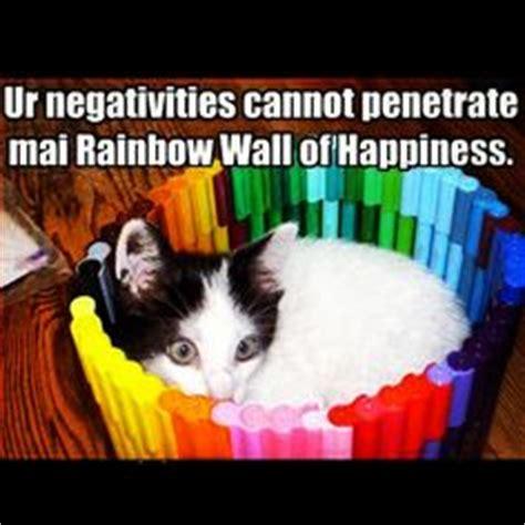 Cat Rainbow Meme - 1000 images about kittens memes on pinterest funny