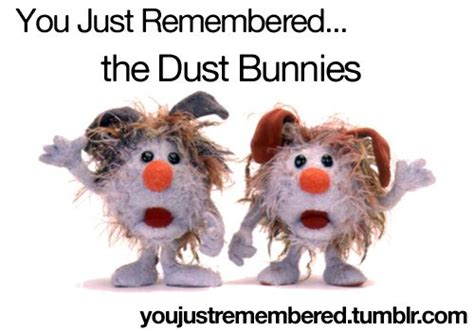 big comfy couch no means no 22 best images about dust bunny humor on pinterest