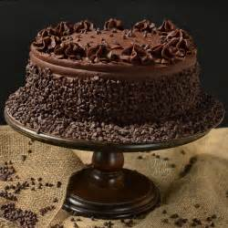dark chocolate cake recipe dishmaps