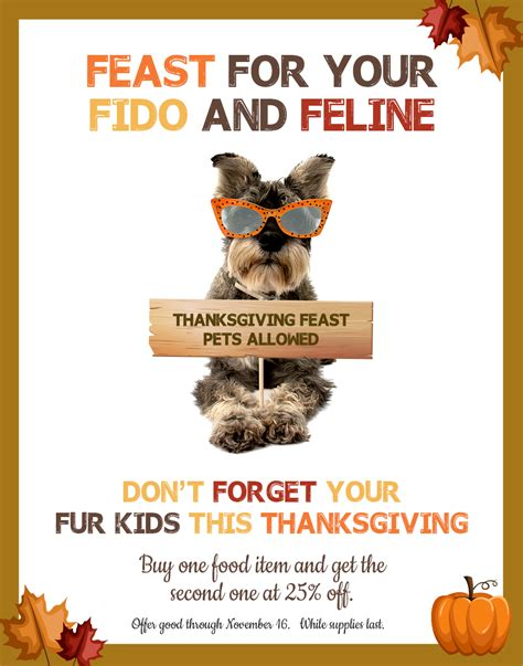 feast your books feast for your fido and feline the animal keeper