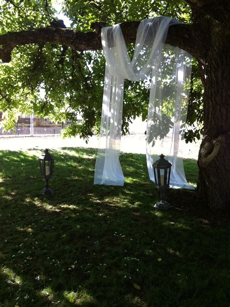 drape fabric  tree branches   alter diy wedding