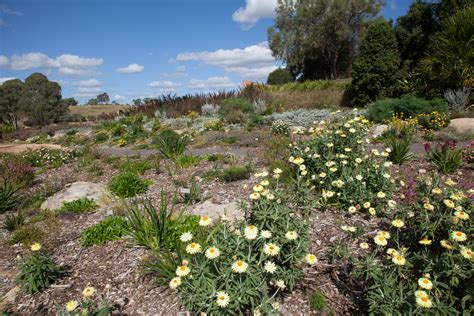 Mt Annan Botanic Garden Sydney In The Best Gardens To Visit Ovolo Hotels