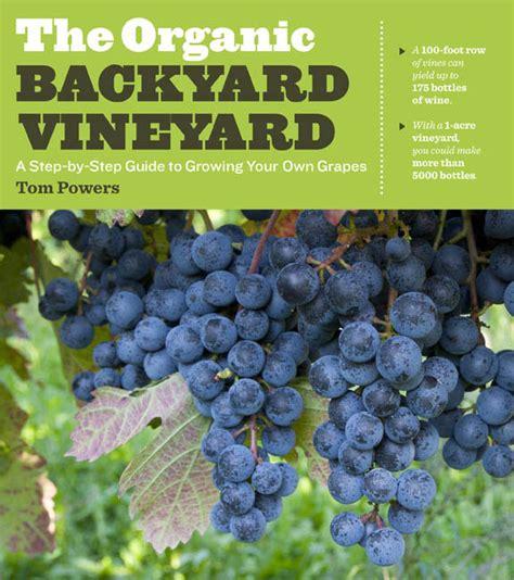 start an organic backyard vineyard green homes