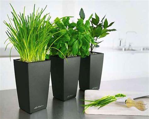 Pot Minimalis Jual Pot Minimalis 0895336476769 pot bunga minimalis search pots search