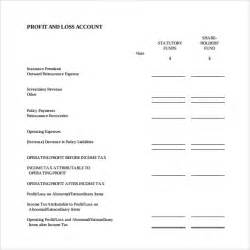 profits and losses template profit and loss template 18 free documents in