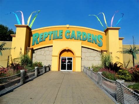 Reptile Gardens Rapid City Sd by One Of The Tortises And Our Family Picture Of