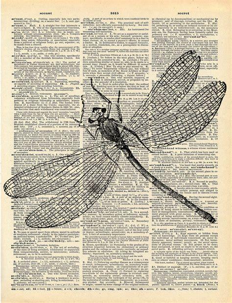 printable art books antique book print dragonfly insect art print art nouveau