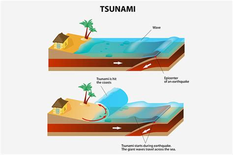 japan facts for kids 10 interesting information and tsunami facts for kids
