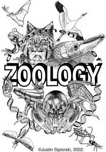 Zoology Kelseys767