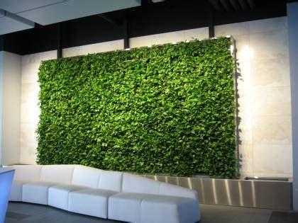 green walls  office designwhat   benefits
