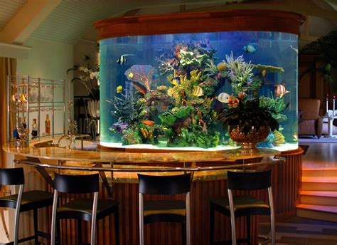 best home aquarium custom aquariums