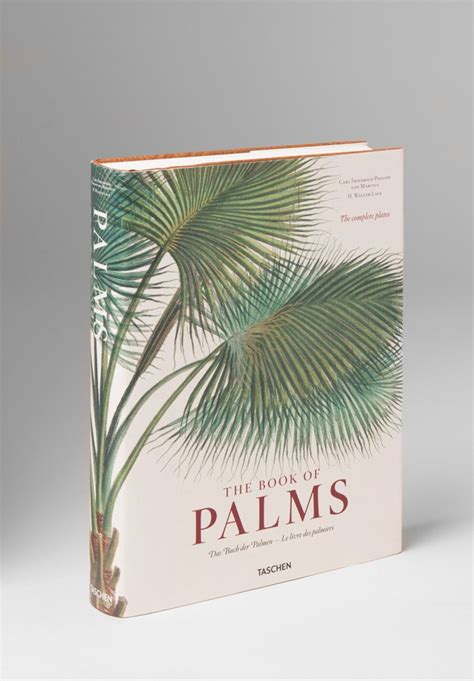 martius the book of taschen quot the book of palms quot by carl von martius santa fe dry goods trippen rundholz avant