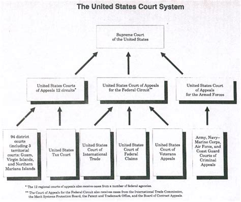 figure 4 9b u s distric court standard courtroom raised hierarchy of the court system images frompo 1