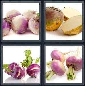 vegetables 4 pics 1 word 4 pics 1 word answer for root vegetable stalk purple