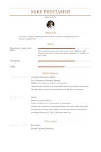 insurance resume sles visualcv resume sles