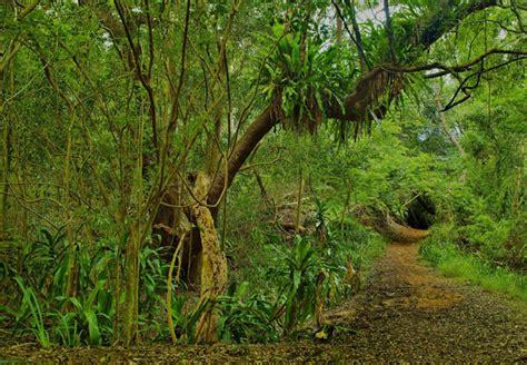 sa botanical gardens