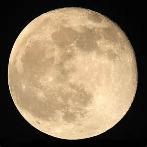 Moon Pictures Moon Moon