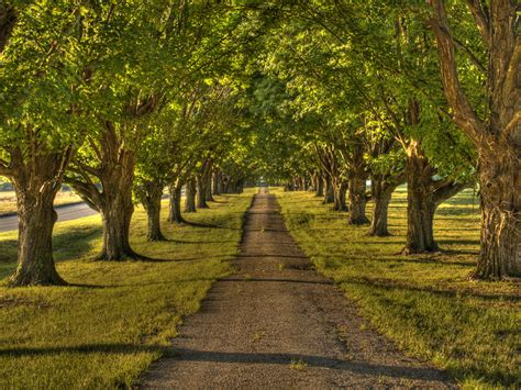 hdr pathway by darkphoenix36 on deviantart