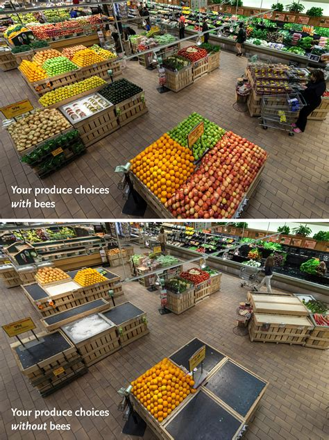 this whole blog is amazeballs i wil have to reference it a quoi ressembleraient nos supermarch 233 s sans les abeilles