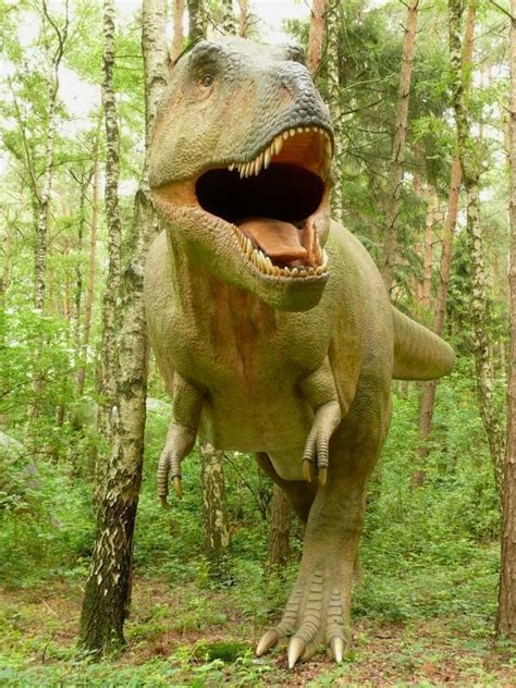 paralititan dinosaur dinosaur  paralititan gallery