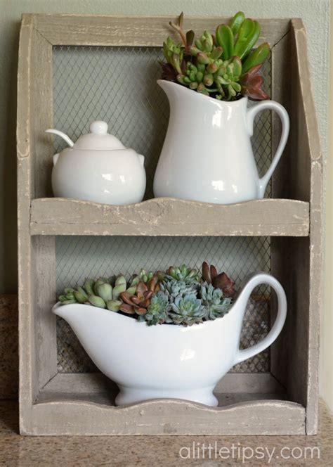 decorating  succulents   tipsy