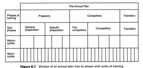 periodisation plan template periodisation in football related keywords periodisation