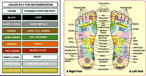 Ionic Foot Detox Information by Foot Detox Information Soul Spa Premier Day Spa