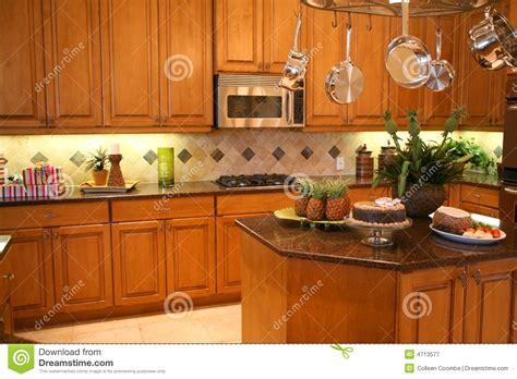 cuisine luxueuse cuisine luxueuse photographie stock libre de droits