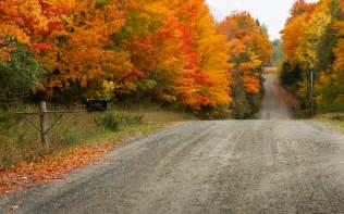 fall landscaping nature autumn trees landscape wallpaper
