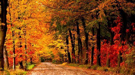 Autumn Landscape Wallpaper (69+ images) Fall Nature Wallpaper