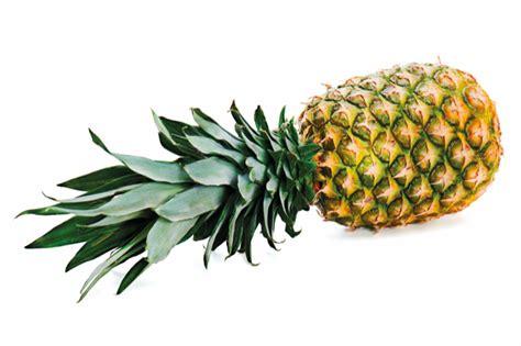 wann ist ananas reif ananas veggipedia