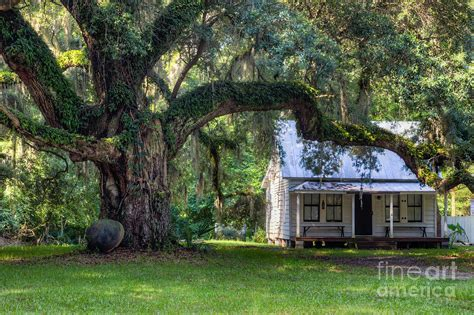 Carolina Cottage by Moses Ficklin Cottage Daufuskie Island South Carolina