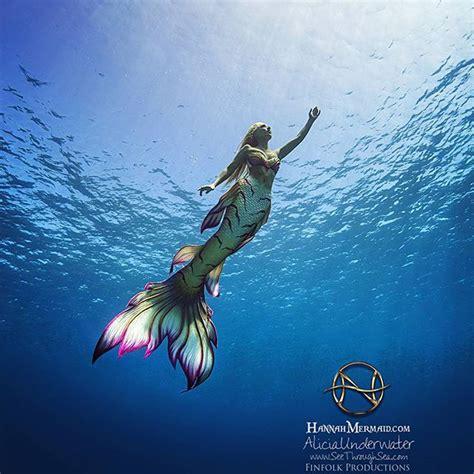imagenes mitologicas sirenas lo que encuetran las sirenas c 243 mo convertirse en sirena