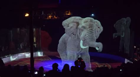 circus  germany   holograms   animals  stop mistreatment
