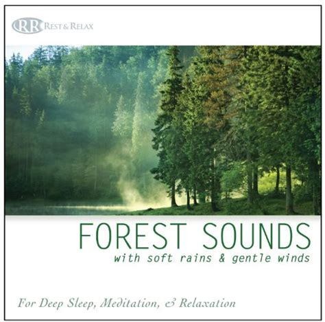 rest relax nature artist series forest sounds with soft rains gentle winds nature sounds