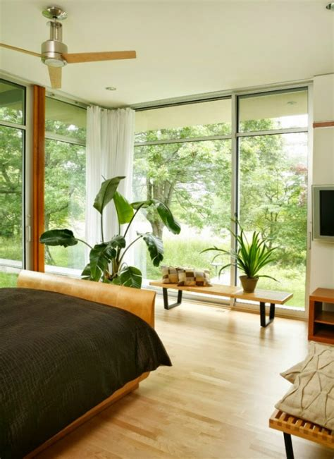 plants to have in bedroom ten reasons to have plants in your home biophilia mocha
