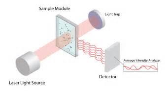 dynamic light scattering