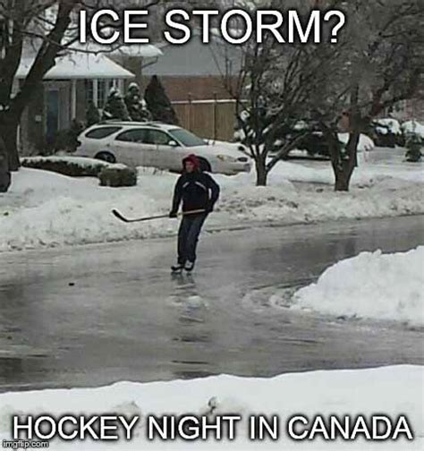 Funny Canadian Memes - gallery for gt canadian spring meme funnies and feels 3