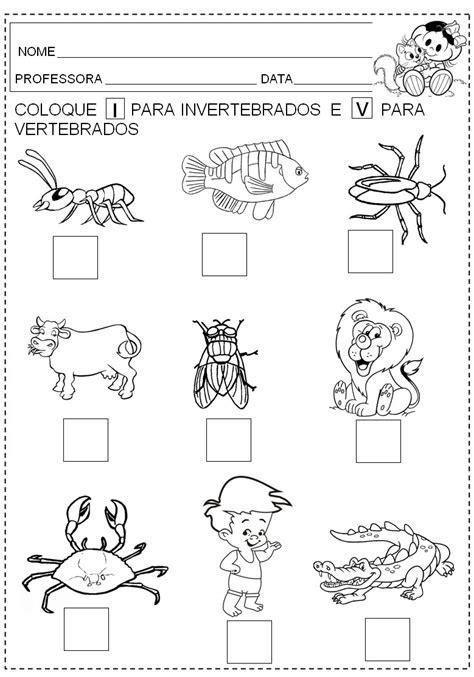 imagenes animales vertebrados e invertebrados para imprimir animais vertebrados e invertebrados exerc 205 cios atividades