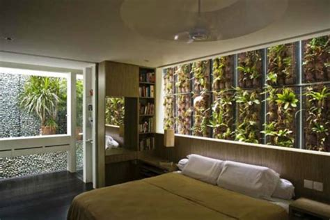 Zimmerpflanze Schlafzimmer by Zimmerpflanzen Schlafzimmer Brocoli Co