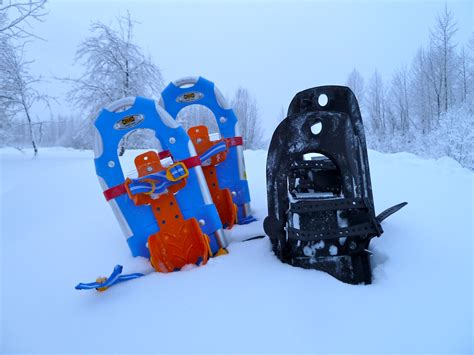 Search In Alaska Find A Winter In Alaska S Interior Snowshoe