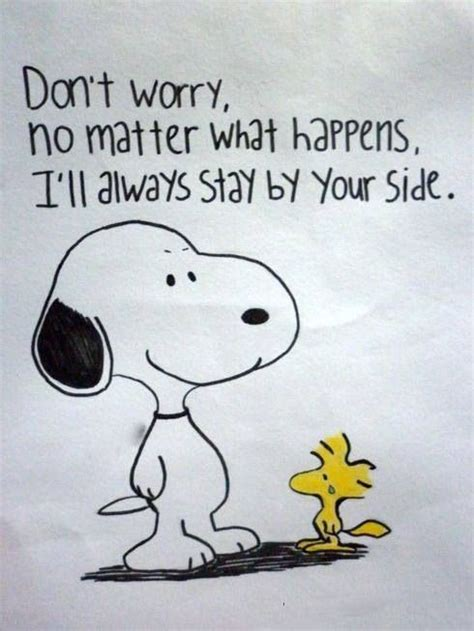 We A Problem But Im On Your Side don t worry snoopy quotes