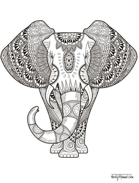 detailed elephant coloring pages 11 free printable adult coloring pages pinterest