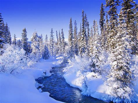 wallpaper desktop snow wallpapers snow wallpapers