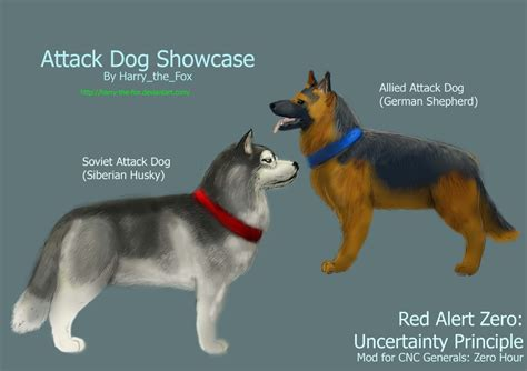 attack dogs ra2 mod attack dogs by harry the fox on deviantart