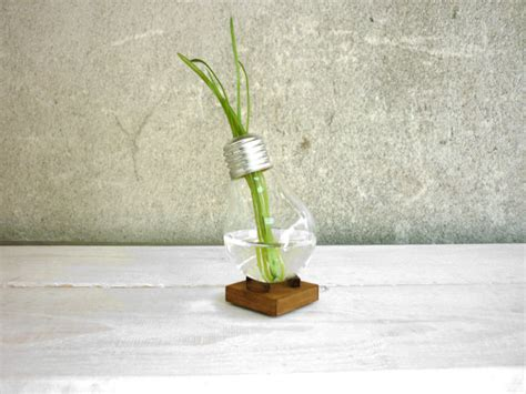Lightbulb Bud Vase by Bud Vase Alpha Glass Vase Miniature Vase Plant
