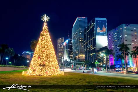xmas lights in miami dade county miami dade county product categories royal stock photo page 9