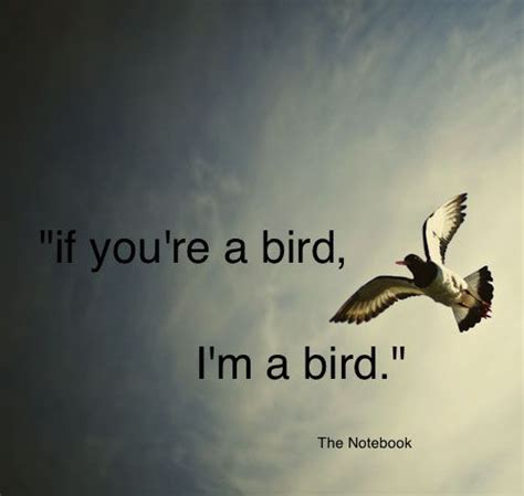 quotes about love and birds quotesgram quotes about love and birds quotesgram